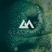 Detritus by GLASS MIND album cover