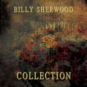Collection by SHERWOOD, BILLY album cover